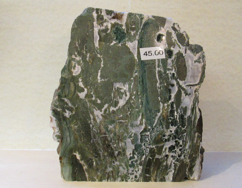 Hampton Butte Polished Petrified Wood $45